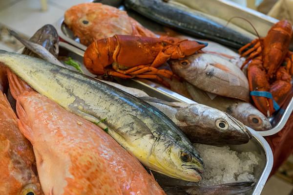 pesce fresco malta