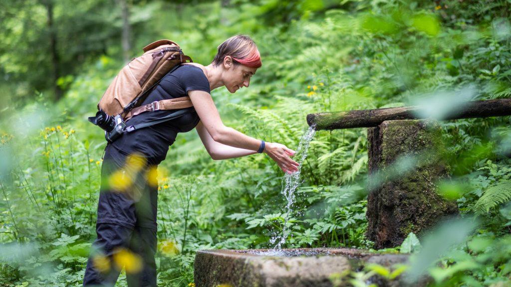 Baiersbronn food hiking