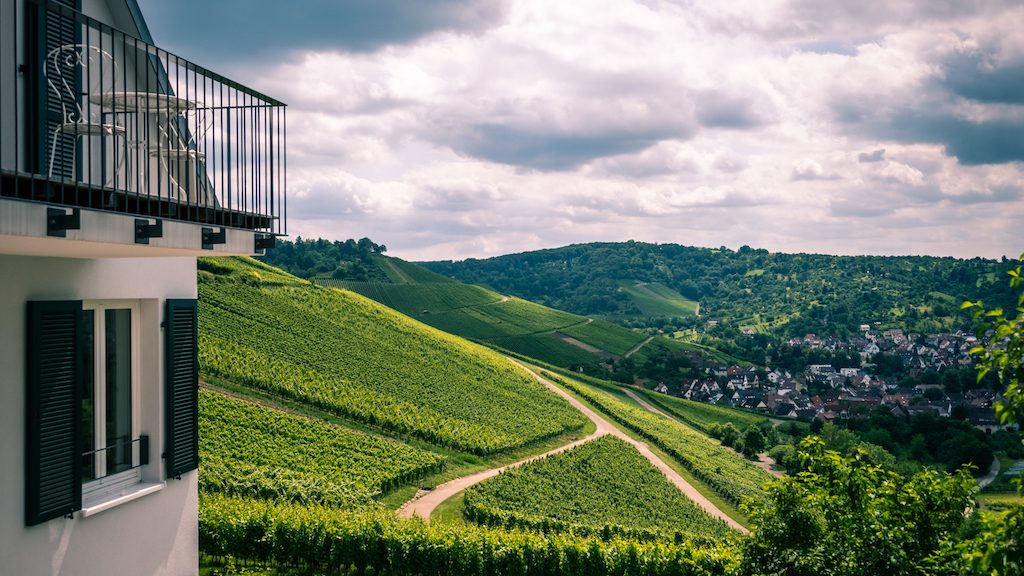 Stuttgart wineries