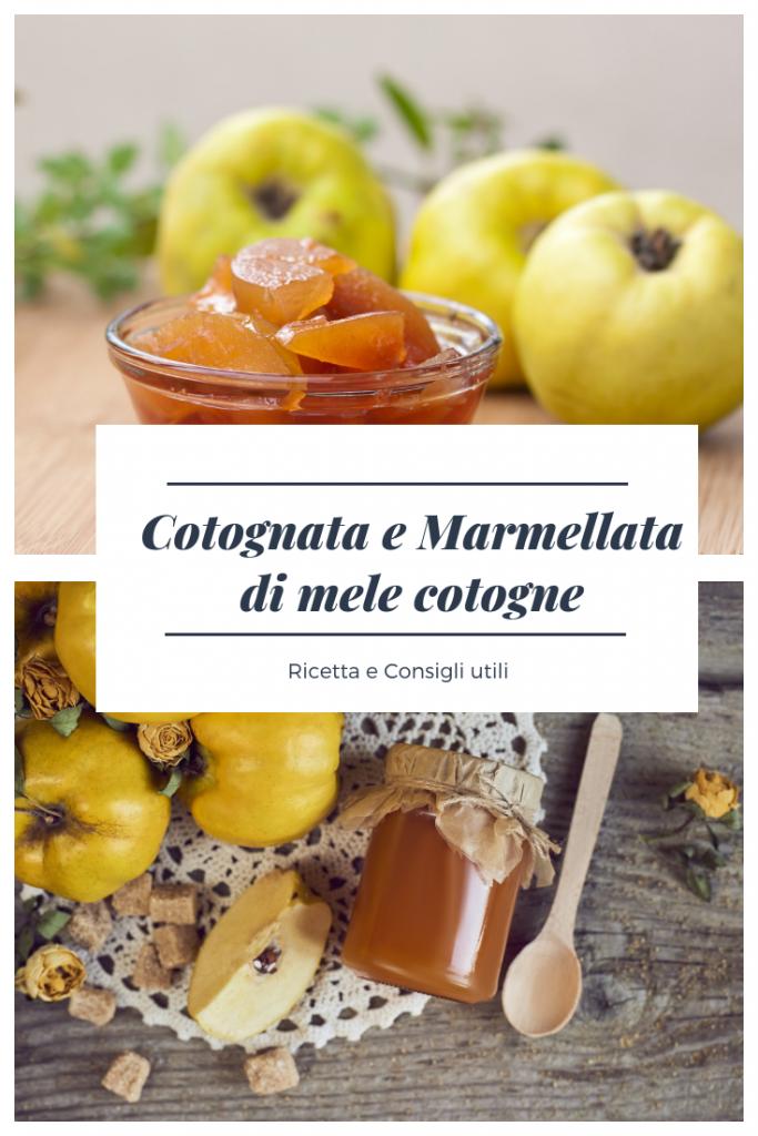 Cotognata Ricetta Marmellata Mele Cotogne
