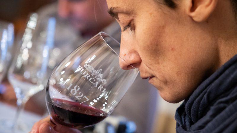 Purcari wine